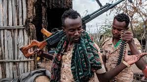 L'esercito etiope nel Tigré